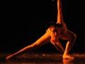 danzart_07487