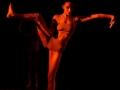 danzart_07623