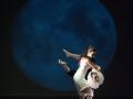 danzart_07502